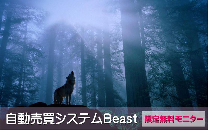 FX自動売買(EA)Beastの特徴